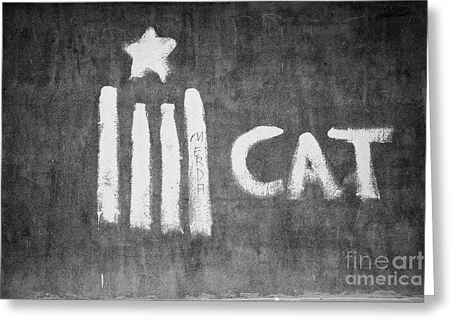 Catalunya Greeting Cards - Catalonian Independence Grafitti On A Wall In Baga Catalonia Spain Greeting Card by Joe Fox