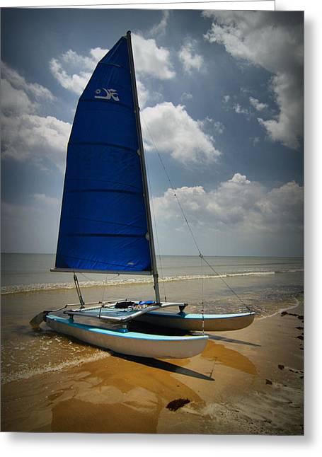 Summer Scene Greeting Cards - Catamaran Greeting Card by Linda Unger