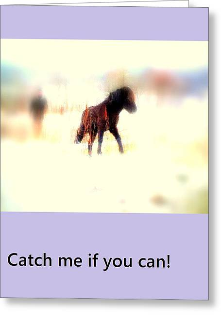 Infidelity Greeting Cards - Catch me if you can Greeting Card by Hilde Widerberg
