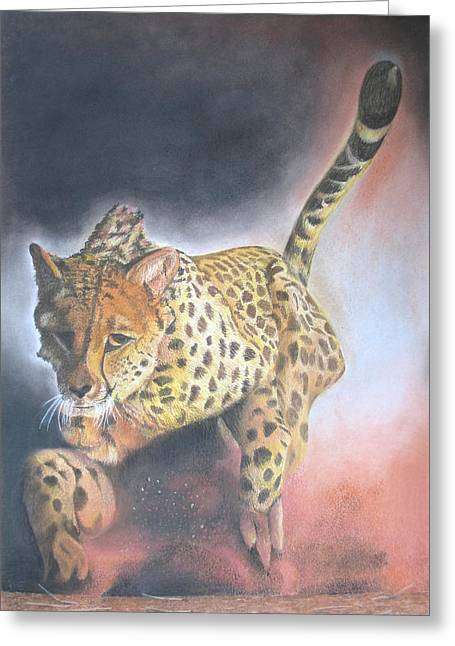 Leopard Running Greeting Cards - Catch Me If You Can Greeting Card by John Hebb