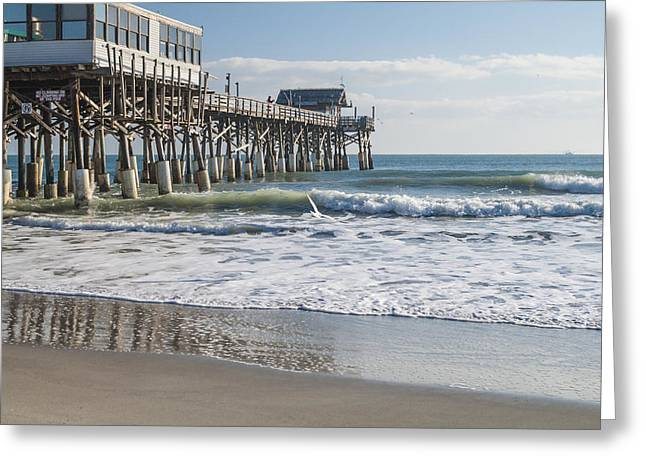 Beach Photograph Greeting Cards - Catch Of The Day Greeting Card by Brian Harig