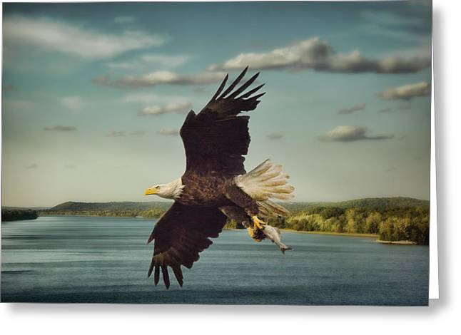 Tennessee River Greeting Cards - Catch of the Day Greeting Card by Jai Johnson