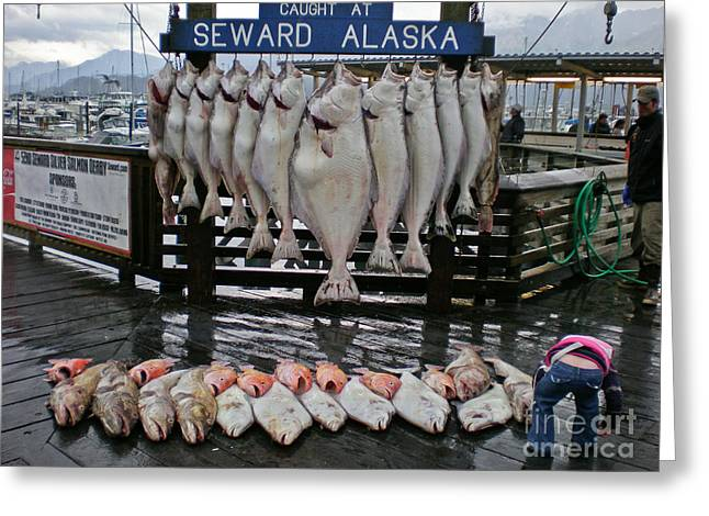 Red Snapper Greeting Cards - Catch Of The Day, Seward, Alaska Greeting Card by Ron Sanford