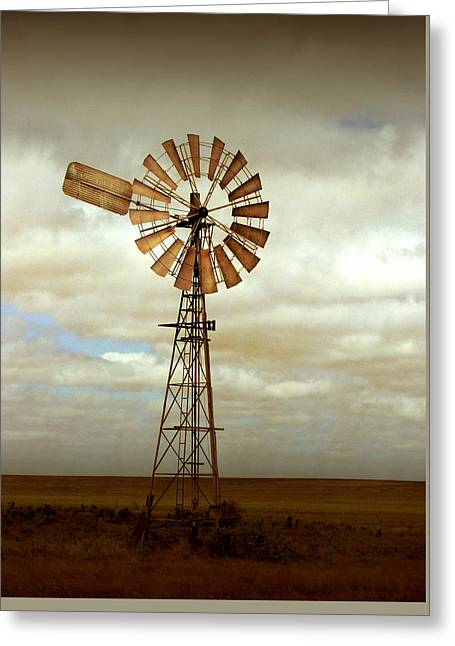 Windmills Greeting Cards - Catch the Wind Greeting Card by Holly Kempe