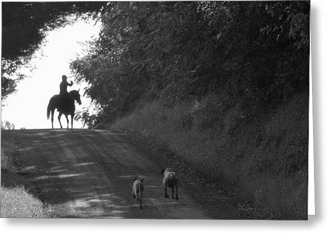 Foxhunting Greeting Cards - Catching Up Greeting Card by Nancy Milburn Kleck