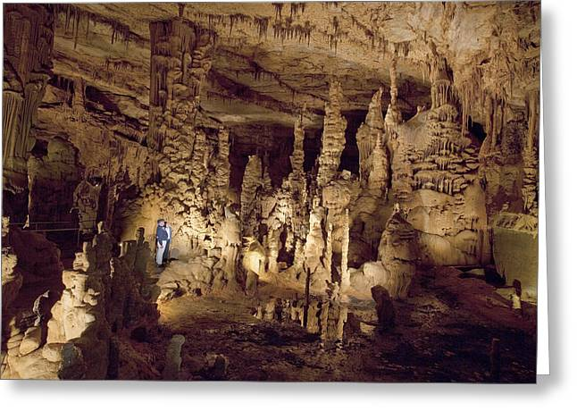 Catherdral Greeting Cards - Cathedral Caverns in Woodville Greeting Card by Carol M Highsmith