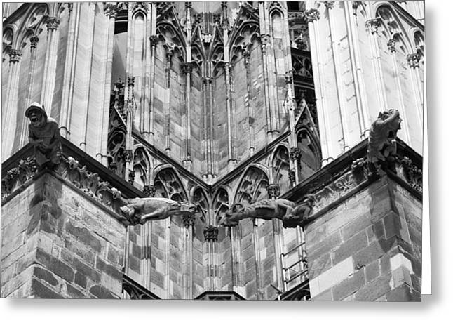 Drain Greeting Cards - Cathedral Gargoyle 07 B W Greeting Card by Teresa Mucha