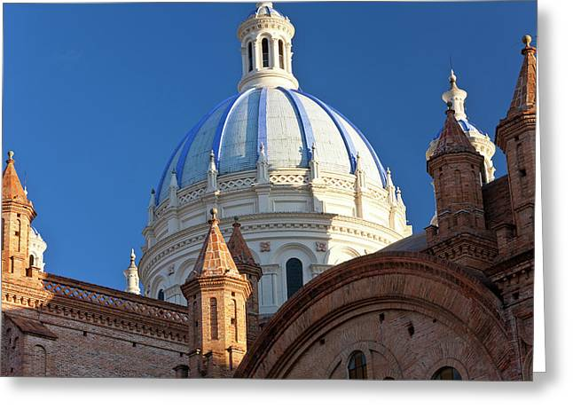 Cathedral Of The Immaculate Conception Greeting Card by Peter Adams