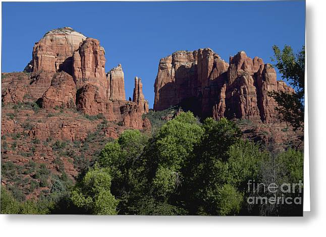 Red Rock Crossing Greeting Cards - Cathedral Rock Greeting Card by Ivete Basso Photography