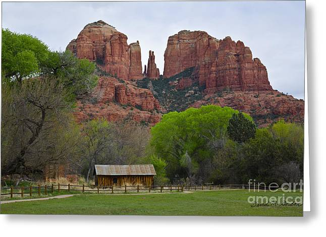 Cathedral Rock V Greeting Card by Dave Gordon