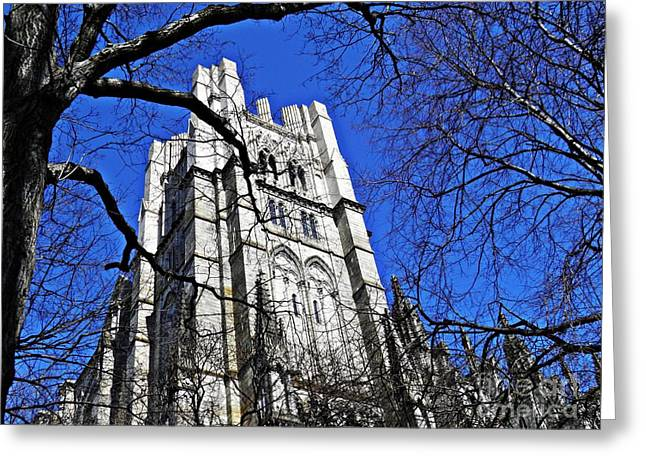 Sarah Loft Photographs Greeting Cards - Cathedral Greeting Card by Sarah Loft