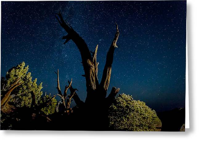 Cathedral Valley Night Sky Greeting Card by Jennifer Grover