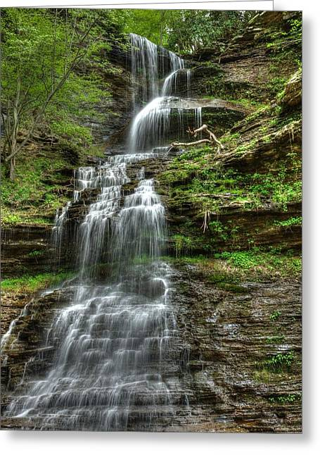 Catherdral Falls Greeting Card by Mark Bowmer