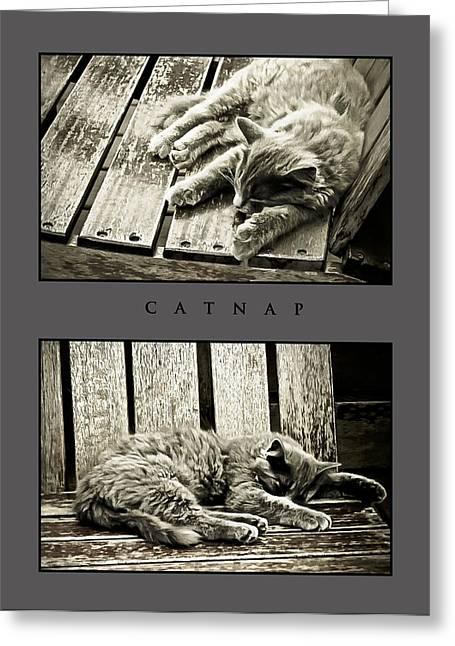 Catnap Greeting Cards - Catnap Greeting Card by Greg Jackson