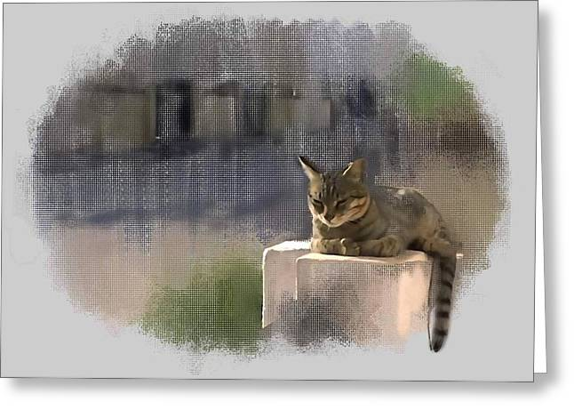 Catnap Greeting Card by Usha Shantharam