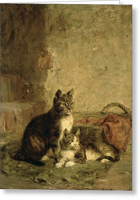 Mother Greeting Cards - Cats, 1883 Oil On Canvas Greeting Card by Julius Adam
