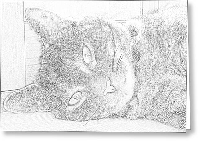 G. Pawer Greeting Cards - Cats Eye Greeting Card by J D Owen