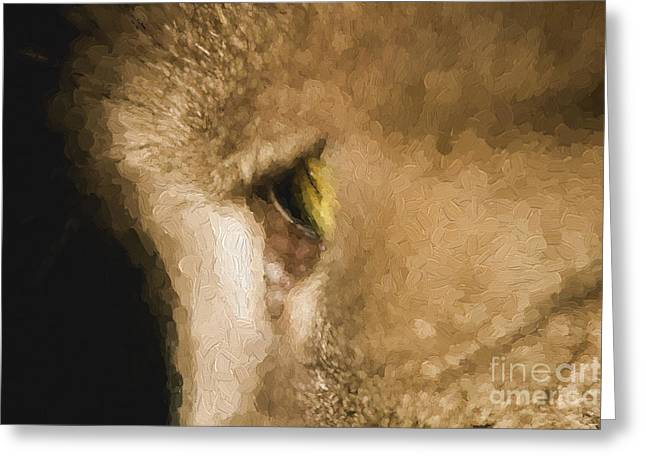 Close-up Of Cat Greeting Cards - Cats eye Greeting Card by Sheila Smart