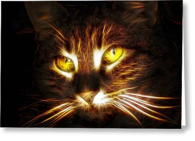 Purchase Digital Art Greeting Cards - Cats Eyes - Fractal Greeting Card by Lilia D