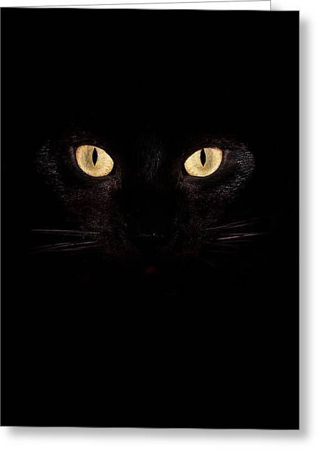 Cat Eyes Greeting Cards - Cats Eyes Phone Case Greeting Card by Mark Rogan