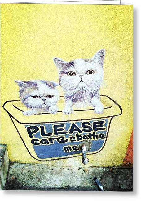 Cat Greeting Cards - Adorable Cats Greeting Card by Francis Tan