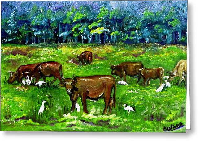 Cattle Grazing With Egrets Greeting Card by Carol Allen Anfinsen