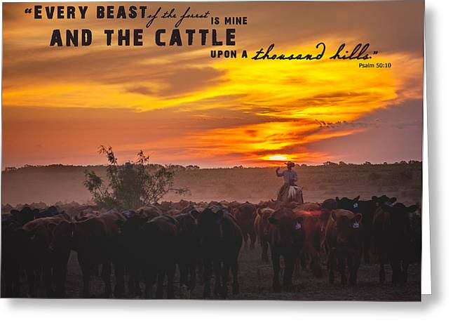 Ranch Greeting Cards - Cattle on a Thousand Hills Greeting Card by Kelli Brown