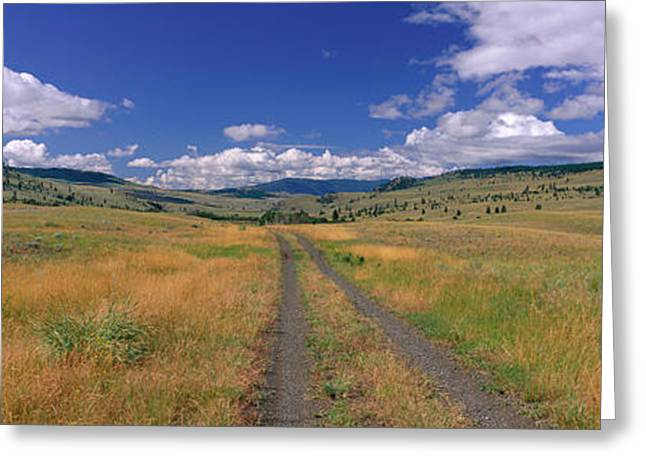 Cattle Ranch Greeting Cards - Cattle Ranch Road Near Merritt British Greeting Card by Panoramic Images