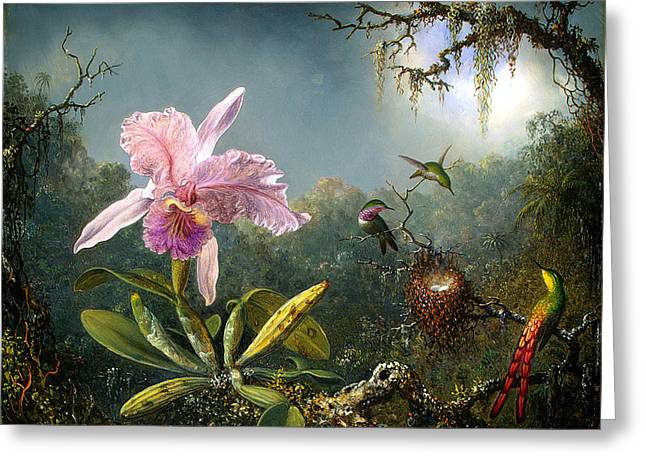 Cattleya Orchid Greeting Cards - Cattleya Orchid and Three Brazilian Hummingbirds Greeting Card by Emile Munier