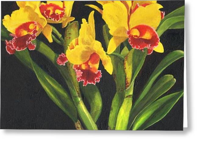 Cattleya Orchid Greeting Card by Richard Harpum