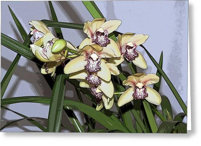 Cattleya Digital Art Greeting Cards - Cattleya Orchids Greeting Card by Beth Wolff