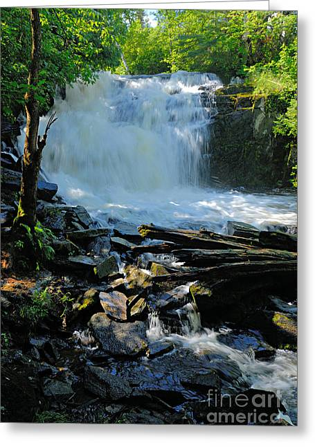 Canoe Waterfall Greeting Cards - Cattyman Falls 2 Greeting Card by Larry Ricker