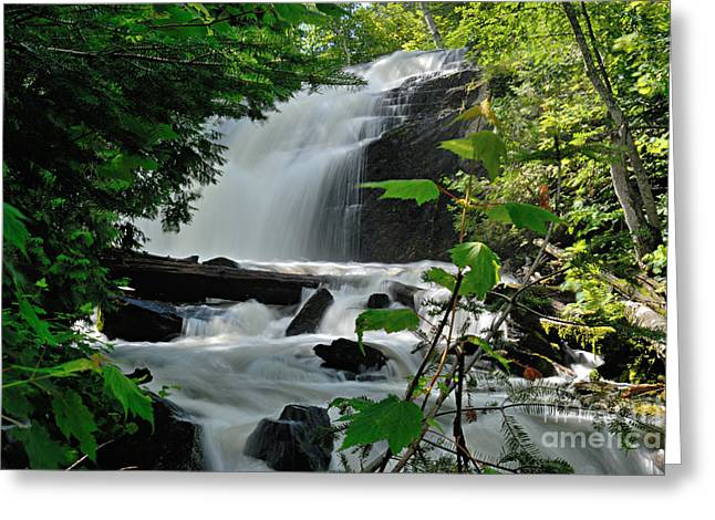 Canoe Waterfall Greeting Cards - Cattyman Falls Greeting Card by Larry Ricker