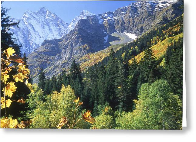 Landscapes Greeting Cards - Caucasia Teberda Greeting Card by Anonymous