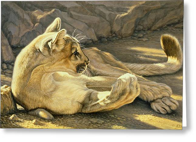 Lions Greeting Cards - Caught Napping Greeting Card by Paul Krapf