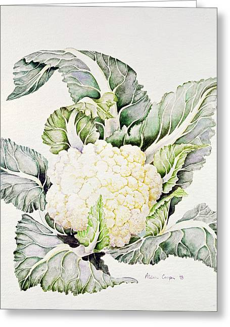 Vegetable Photographs Greeting Cards - Cauliflower Study, 1993 Wc Greeting Card by Alison Cooper