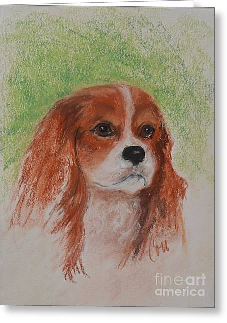 Puppies Pastels Greeting Cards - Cavalier At Heart Greeting Card by Cori Solomon
