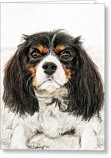 Playful Pastels Greeting Cards - Cavalier King Charles Spaniel Painting Greeting Card by Kate Sumners