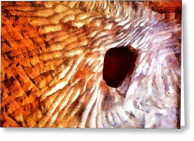 Jordan Mixed Media Greeting Cards - Cave window in Petra Greeting Card by Jenny Setchell