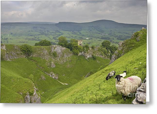Mam Tor Greeting Cards - Cavedale castleton the Peak District National Park Greeting Card by Darren Burroughs