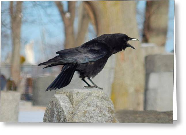Ravens In Graveyard Greeting Cards - Caw Caw Caw Greeting Card by Gothicolors Donna Snyder
