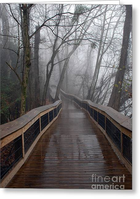 Cayce River Walk Greeting Card by Skip Willits