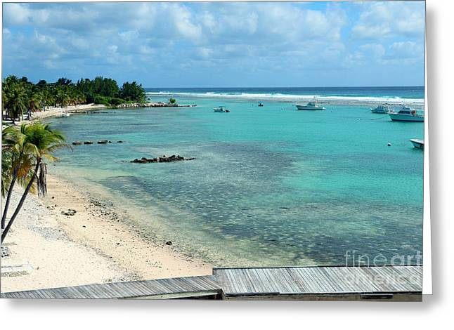 Scuba Diving Greeting Cards - Cayman Beach Greeting Card by Carey Chen