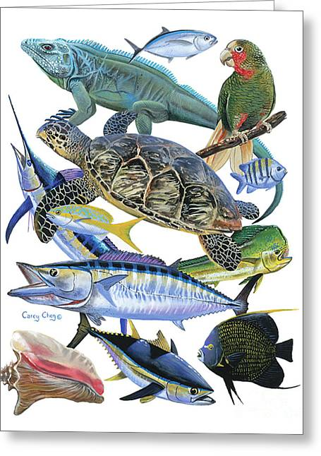 Angel Blues Greeting Cards - Cayman collage Greeting Card by Carey Chen