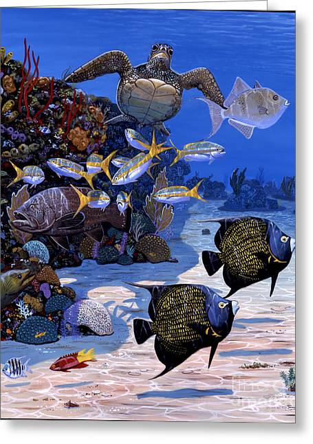 Green Turtle Greeting Cards - Cayman Reef Re0024 Greeting Card by Carey Chen