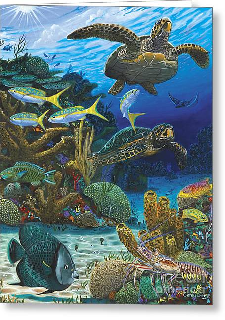 Green Turtle Greeting Cards - Cayman Turtles Re0010 Greeting Card by Carey Chen