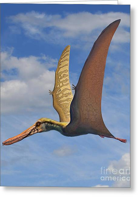Existence Greeting Cards - Cearadactylus Atrox, A Large Pterosaur Greeting Card by Sergey Krasovskiy