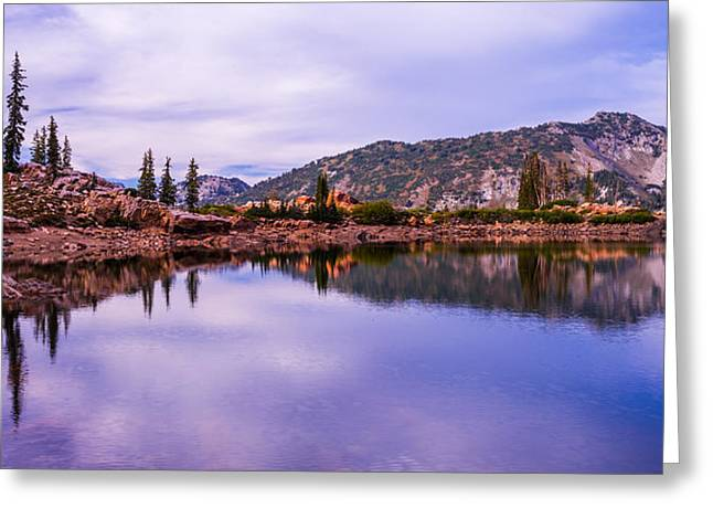 Pine Tree Photographs Greeting Cards - Cecret Reflection Greeting Card by Chad Dutson