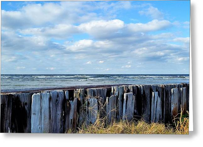 Harkers Greeting Cards - Cedar Island Gale Greeting Card by Karen Rhodes