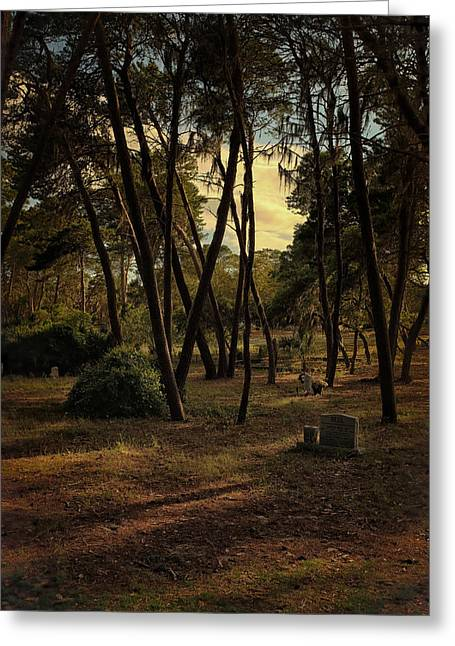 Cedar Key Greeting Cards - Cedar Key Cemetery Greeting Card by Rory Brennan